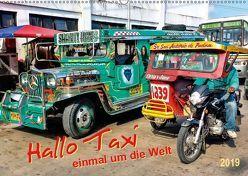 Hallo Taxi – einmal um die Welt (Wandkalender 2019 DIN A2 quer) von Roder,  Peter