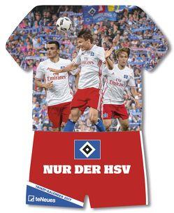 Hamburger SV 2018