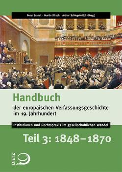 Handbuch der europäischen Verfassungsgeschichte im 19. Jahrhundert von Brandt,  Peter, Daum,  Werner, Kirsch,  Martin, Schlegelmilch,  Arthur