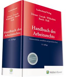 Handbuch des Arbeitsrechts von Dörner,  Klemens Maria, Luczak,  Stefan, Wildschütz,  Martin