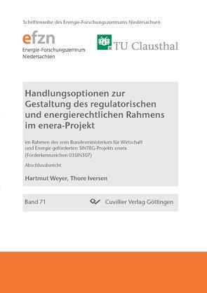 Handlungsoptionen zur Gestaltung des regulatorischen und energierechtlichen Rahmens im enera-Projekt von Weyer,  Hartmut
