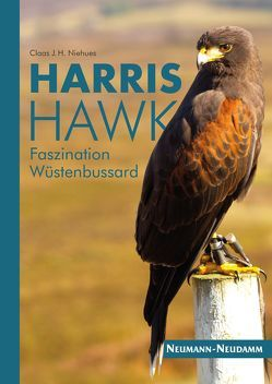 Harris Hawk von Niehues,  Claas