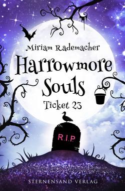 Harrowmore Souls (Band 2): Ticket 23 von Rademacher,  Miriam