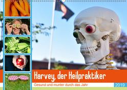 Harvey, der Heilpraktiker (Wandkalender 2019 DIN A2 quer) von Jordan,  Diane