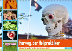 Harvey, der Heilpraktiker (Wandkalender 2019 DIN A3 quer) von Jordan,  Diane