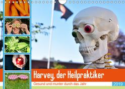 Harvey, der Heilpraktiker (Wandkalender 2019 DIN A4 quer) von Jordan,  Diane
