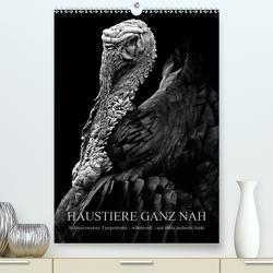 HAUSTIERE GANZ NAH (Premium, hochwertiger DIN A2 Wandkalender 2021, Kunstdruck in Hochglanz) von Hunscha,  Anké