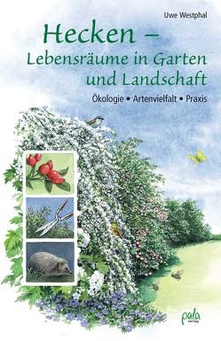 Hecken – Lebensräume in Garten und Landschaft von Schneevoigt,  Margret, Westphal,  Uwe