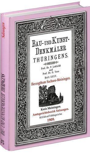 [HEFT 35] Bau- und Kunstdenkmäler Thüringens. Kreis Meiningen – Amtsgerichtsbezirk SALZUNGEN 1909. von Lehfeldt,  Paul, Rockstuhl,  Harald, Voss,  Georg
