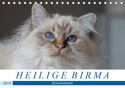 Heilige Birma Katzen (Tischkalender 2019 DIN A5 quer) von Münch,  Michaela