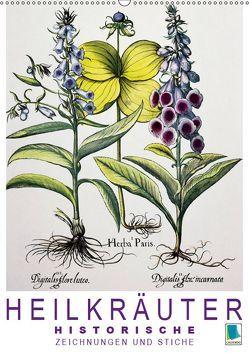 Heilkräuter: Historische Zeichnungen und Stiche (Wandkalender 2019 DIN A2 hoch)