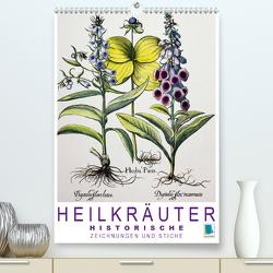 Heilkräuter: Historische Zeichnungen und Stiche (Premium, hochwertiger DIN A2 Wandkalender 2020, Kunstdruck in Hochglanz) von CALVENDO