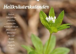 HeilkräuterkalenderAT-Version (Wandkalender 2019 DIN A2 quer) von Your Spirit,  Use