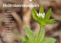 HeilkräuterkalenderAT-Version (Wandkalender 2019 DIN A3 quer) von Your Spirit,  Use
