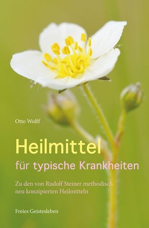 Heilmittel für typische Krankheiten von Wolff,  Otto