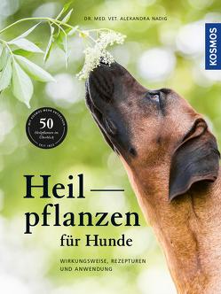 Heilpflanzen für Hunde von Nadig,  Alexandra