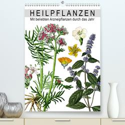 Heilpflanzen (Premium, hochwertiger DIN A2 Wandkalender 2021, Kunstdruck in Hochglanz) von bilwissedition.com Layout: Babette Reek,  Bilder:
