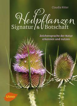 Heilpflanzen. Signatur und Botschaft von Ritter,  Claudia
