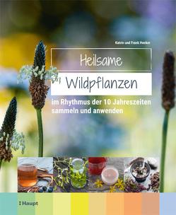 Heilsame Wildpflanzen von Hecker,  Frank, Hecker,  Katrin