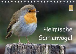 Heimische Gartenvögel (Tischkalender 2018 DIN A5 quer) von Wilczek,  Dieter-M.