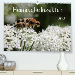 Heimische Insekten 2021 (Premium, hochwertiger DIN A2 Wandkalender 2021, Kunstdruck in Hochglanz) von Hahnefeld,  Silvia