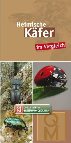 Heimische Käfer im Vergleich von Quelle & Meyer Verlag