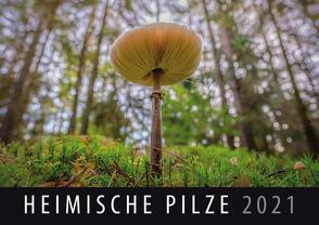 Heimische Pilze 2021 von Quelle & Meyer Verlag