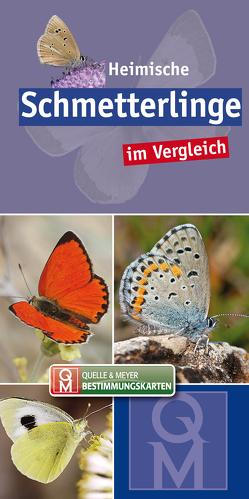 Heimische Schmetterlinge im Vergleich von Quelle & Meyer Verlag