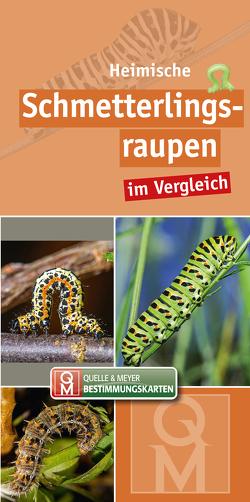 Heimische Schmetterlingsraupen von Quelle & Meyer Verlag