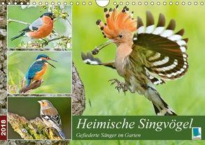 Heimische Singvögel (Wandkalender 2018 DIN A4 quer) von CALVENDO