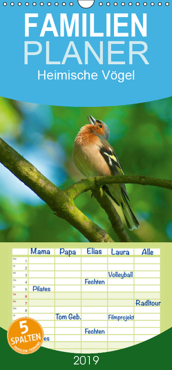 Heimische Vögel – Familienplaner hoch (Wandkalender 2019 , 21 cm x 45 cm, hoch) von Mooß,  Ralf