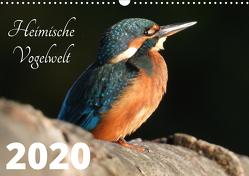 Heimische Vogelwelt – 2020 (Wandkalender 2020 DIN A3 quer) von Miadok,  Peter