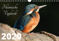 Heimische Vogelwelt – 2020 (Wandkalender 2020 DIN A4 quer) von Miadok,  Peter