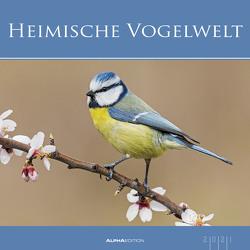 Heimische Vogelwelt 2021 – Bild-Kalender 33×33 cm – Birds – Tierkalender – Wandplaner – Alpha Edition