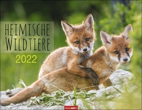 Heimische Wildtiere Kalender 2022 von Weingarten