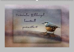 Heimische Wildvögel kunstvoll präsentiert (Wandkalender 2019 DIN A2 quer) von Hultsch,  Heike