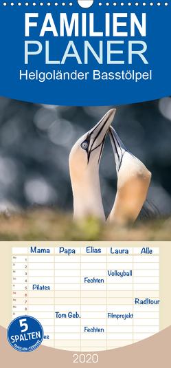 Helgoländer Basstölpel – Familienplaner hoch (Wandkalender 2020 , 21 cm x 45 cm, hoch) von Mirsberger,  Annett