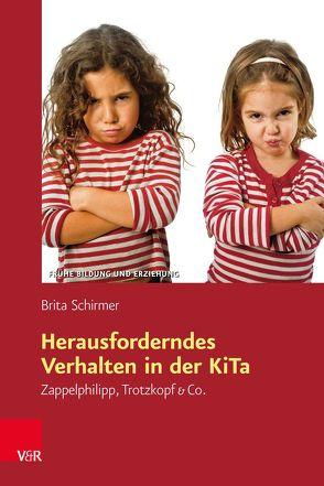 Herausforderndes Verhalten in der KiTa von Schirmer,  Brita
