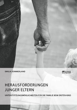 Herausforderungen junger Eltern. Unterstützungsmöglichkeiten für die Familie beim ersten Kind von Sommerland,  Emilia