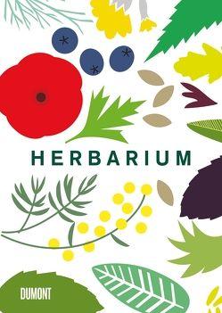 Herbarium von Degen,  Heinrich, Hildebrand,  Caz