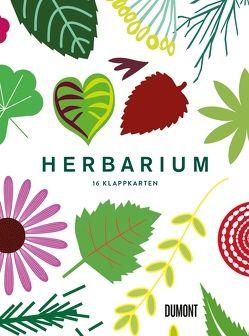Herbarium von Hildebrand,  Caz