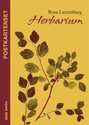 Herbarium Postkartenset von Luxemburg,  Rosa