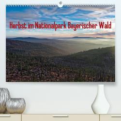 Herbst im Nationalpark Bayerischer Wald (Premium, hochwertiger DIN A2 Wandkalender 2021, Kunstdruck in Hochglanz) von Enders,  Borg