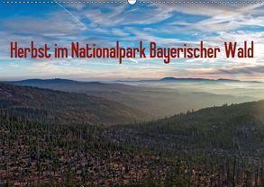 Herbst im Nationalpark Bayerischer Wald (Wandkalender 2018 DIN A2 quer) von Enders,  Borg