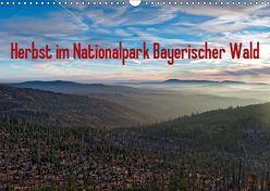 Herbst im Nationalpark Bayerischer Wald (Wandkalender 2019 DIN A3 quer) von Enders,  Borg