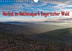 Herbst im Nationalpark Bayerischer Wald (Wandkalender 2019 DIN A4 quer) von Enders,  Borg
