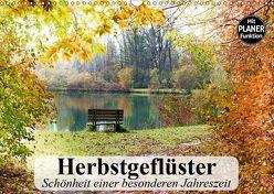 Herbstgeflüster. Schönheit einer besonderen Jahreszeit (Wandkalender 2019 DIN A3 quer) von Stanzer,  Elisabeth