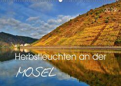 Herbstleuchten an der Mosel (Wandkalender 2019 DIN A2 quer) von Heußlein,  Jutta