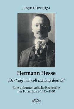 """Hermann Hesse: """"Der Vogel kämpft sich aus dem Ei"""". Eine dokumentarische Recherche der Krisenjahre 1916 – 1920. Korrespondenzen und Quellennachweise von Below,  Jürgen"""