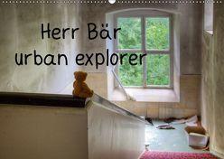 Herr Bär urban explorer (Wandkalender 2019 DIN A2 quer) von Buchmann,  Oliver